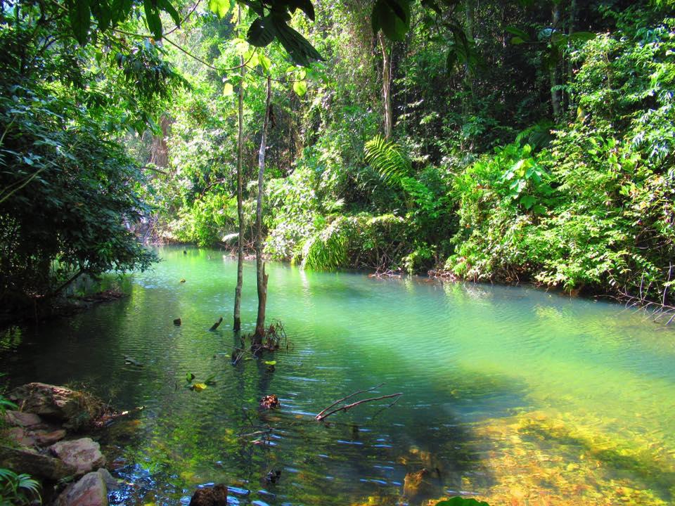 Koh Lanta jungle trails